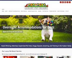 Pet N Play Resort